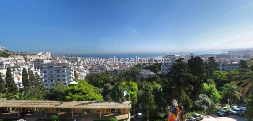 Ecole des Beaux Arts -Alger 360